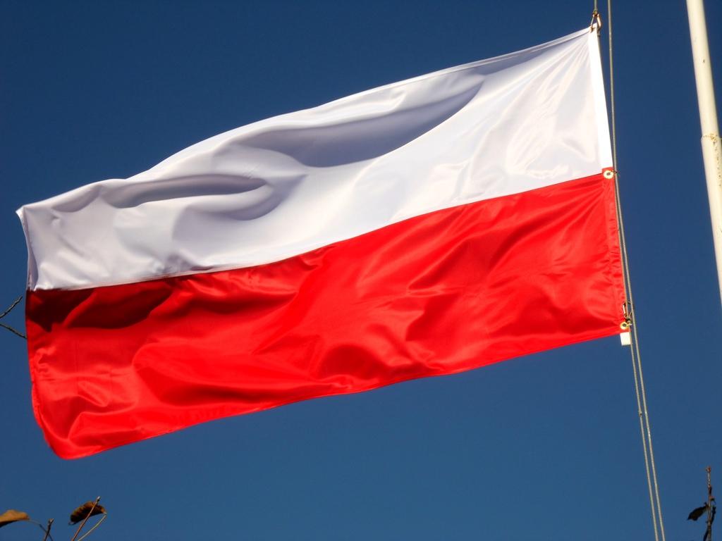 Купить Флаг Польши Польша 100 x 160 см Д на Мачту на Otpravka - цены и фото - доставка из Польши и стран Европы в Украину.