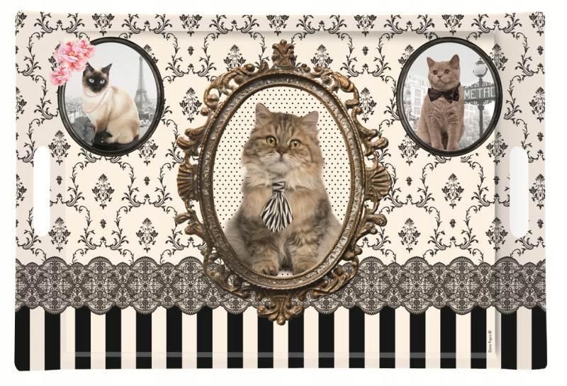 VEĽKÉ MAT TABUĽKA Vintage Mačky MAČKY MAČKY