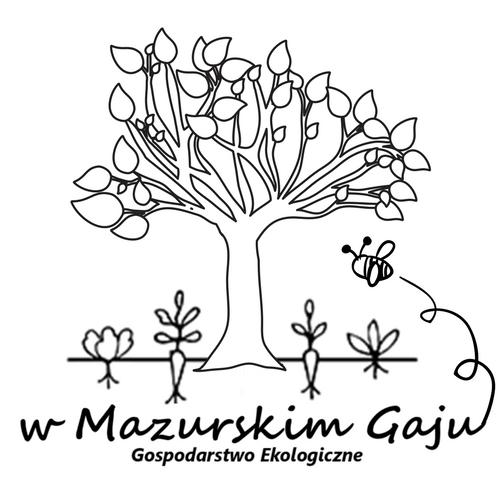 Купить KISZONY топинамбур в сотах с водорослями WAKANAME на Eurozakup - цены и фото - доставка из Польши и стран Европы в Украину.