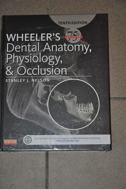 Wheelers Dental Anatomy Physiology And Occlusion 7306946942