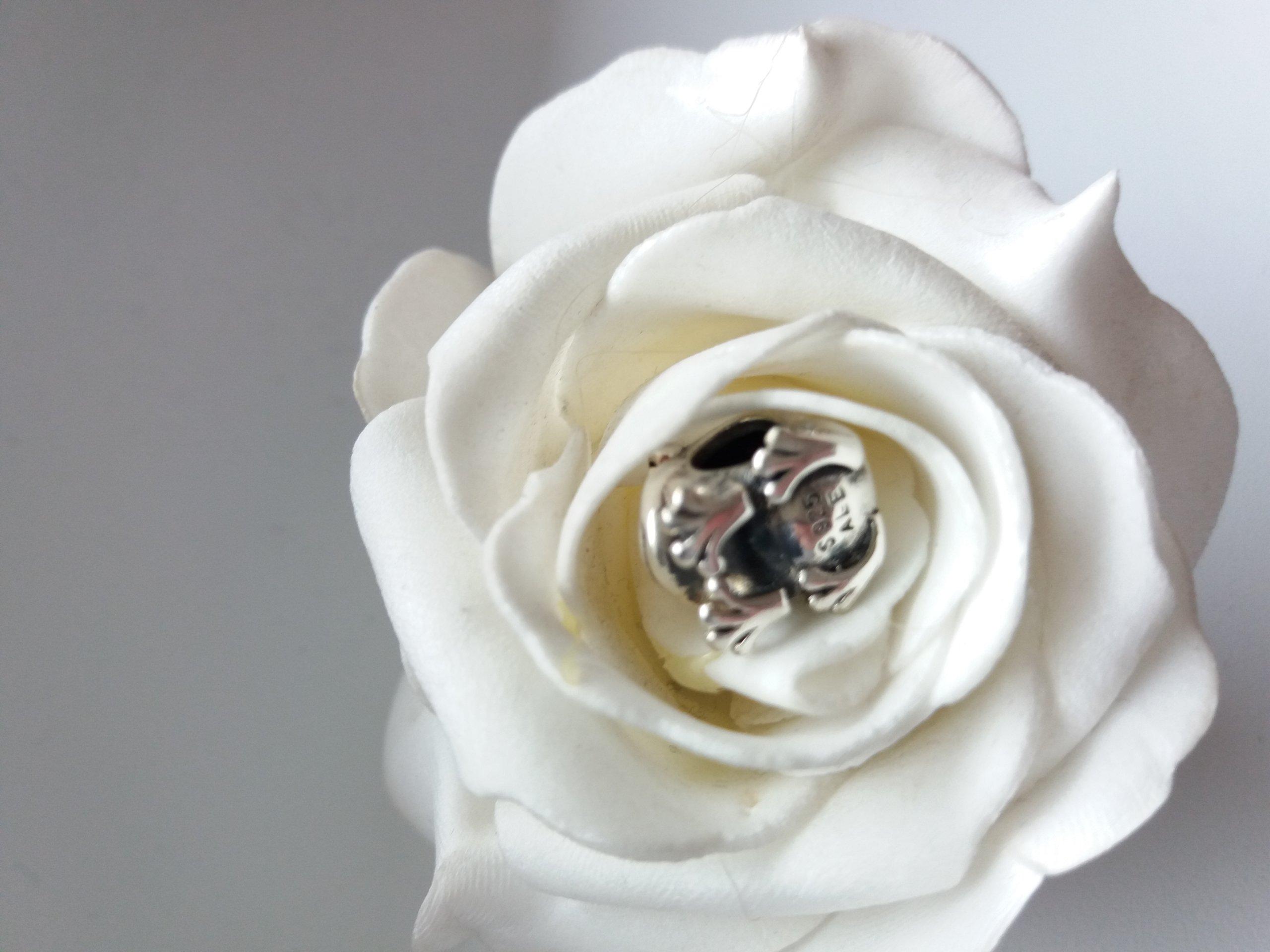 Pandora mój książe charms żaba srebrny
