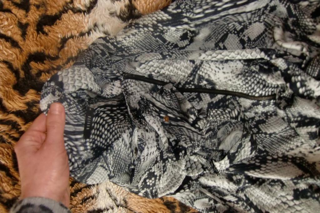 Koszula snake Mohito 34 w Koszule damskie Allegro.pl