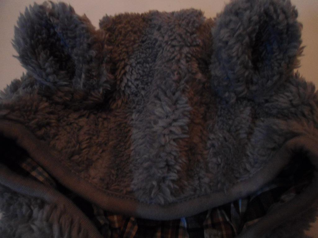 80 Bluza kurtka puchata miś COOL CLUB JESIEŃ