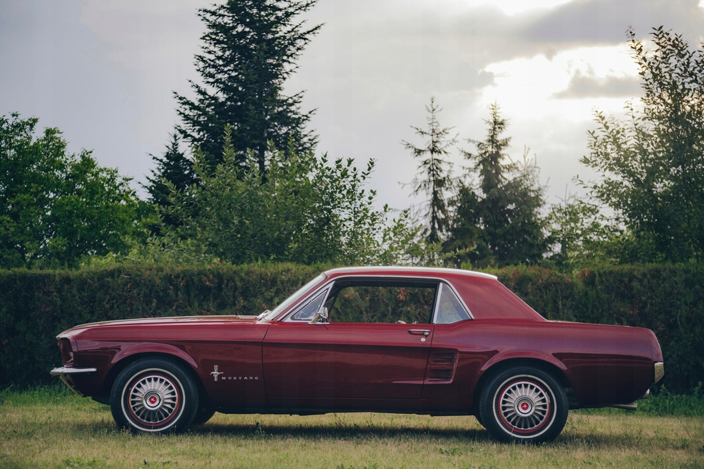Ford Mustang 1967 - 100% ORYGINAL - idealny - 7551043056 ...