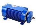 Silnik elektryczny 1 fazowy Jamnik 2,2kW 2800 NOWY