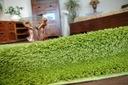 DYWAN SHAGGY 5cm zielony 50x150 jednolity miękki Przeznaczenie do wnętrz