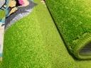 Dywan FUNKY TOP 300x400 SUS zielony zwierzęta 3x4 7057384378