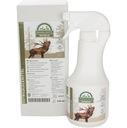 Wabik zapachowy na jelenia - byka / EUROHUNT