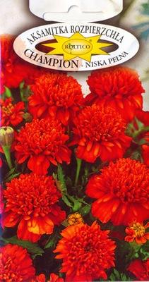 INSTAGRAM __ЧЕМПИОН__NAJPIĘNIEJSZA Полное цветы -