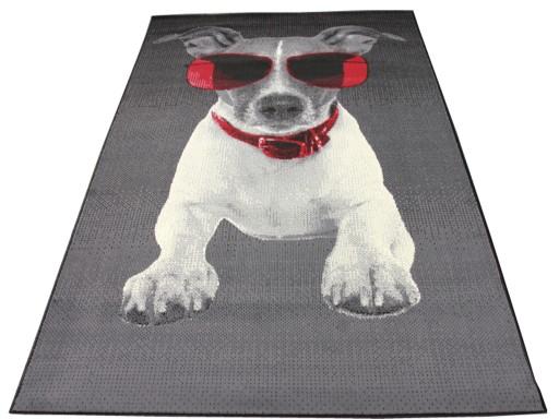 Dywany Młodzieżowe Doggy Dog Black 120x170 Piesek