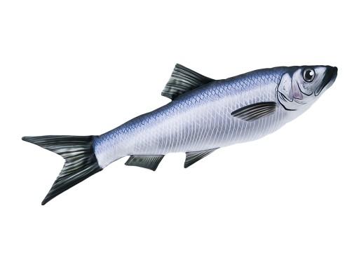Poduszka-ryba-GABY-maskotka-pluszak-SLEDZ-60cm