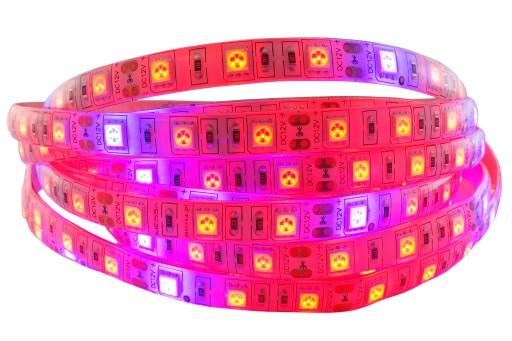 Taśma LED 5050 300 GROW wzrostu roślin 12V IP65 1m