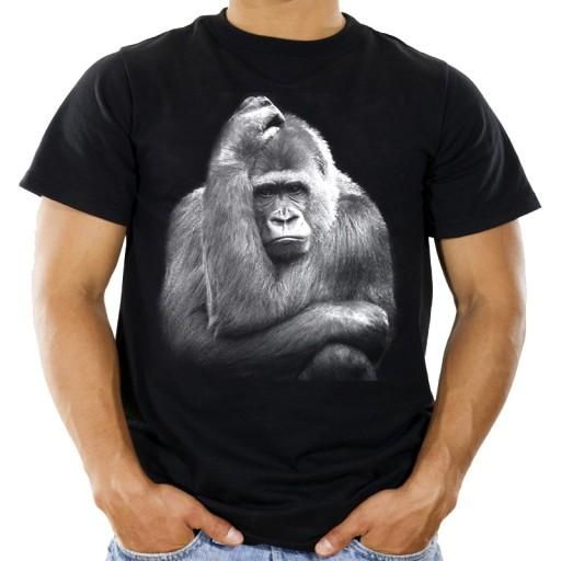 Koszulka z szympansem małpą t-shirt szympans HQ XL